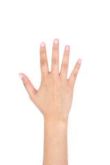 Woman right hand showing the five fingers isolated.