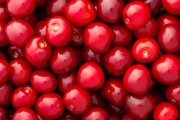 detail of fresh shiny cherries