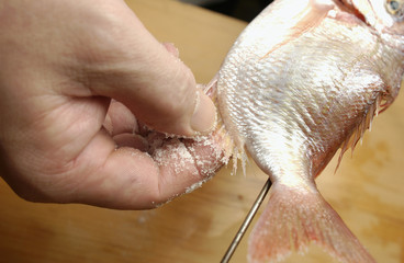 Chef putting salt on skewered sea bream, close up
