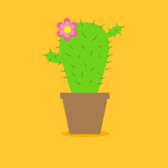 Cute cartoon cactus flower in the pot. Flat design.