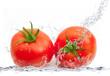 coppia di pomodori splash