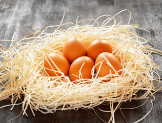 Chicken eggs in a nest