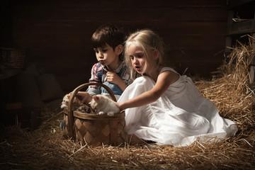Children go kittens in basket