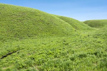 阿蘇の高原の丘