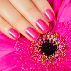 pink manicure with flower gerbera on a gold background.