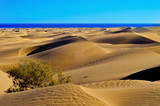 Natural Reserve of Dunes of Maspalomas, in Gran Canaria, Spain