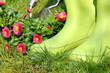 bottes en caoutchouc pour jardinage