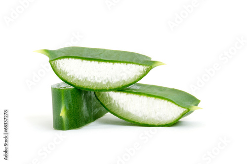 Foto op Canvas Cactus Aloe vera isolated on white
