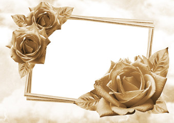 Beautiful roses with photo frame