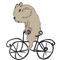 cartoon hamster on a bike