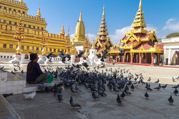 Feeding Bird at Shwezigon Pagoda . ,  Bagan in Myanmar (Burmar)