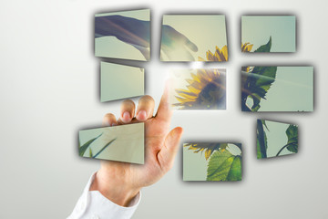 Man doing a presentation with a sunflower image