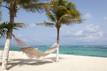 Idyllic beach with coconut trees and hammock at Mexico
