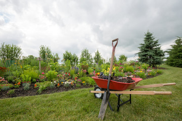 Red wheelbarrow with shovel in the garden