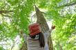 ブナの木を見上げる子供 - 66342669