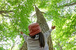 Leinwanddruck Bild - ブナの木を見上げる子供