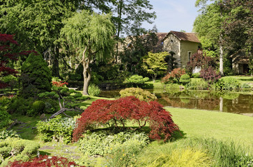 Jardin japonais 5