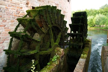 Moss covered water mill