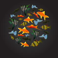 Colorful Aquarium Fishes isolated polygonal vector illustration
