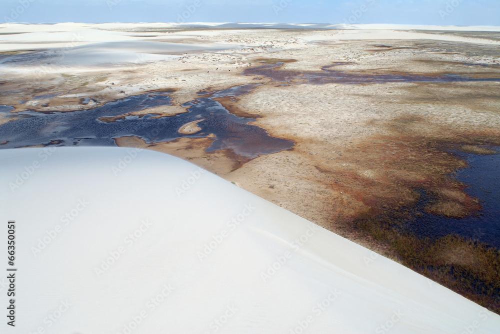uroda wydma północ - powiększenie