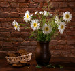 Daisies in vase and bakery pieces of  bread