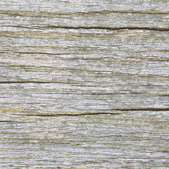 close - up natural white and old wood texture