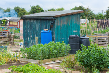 Allotment shed with compost bins and water butt