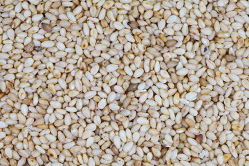 close - up organic natural sesame seeds