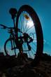 bike in sunny day