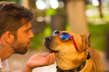 dog in eyeglasses with a male model.