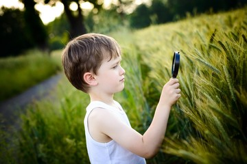 child looks at the grain through a magnifying glass