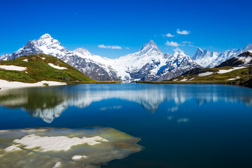 Wetterhorn, Schreckhorn, and Finsteraarhorn from Bachalpsee