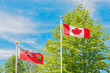Canadian and Ontario flag, trees and sky at the background.