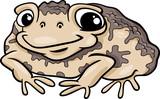 toad amphibian cartoon illustration poster