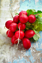 Red radishes bundle a