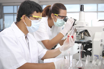 young female scientist and male scientist  in  laboratory
