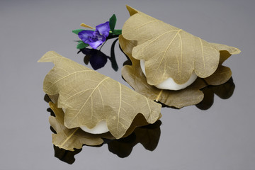 Wagashi wrapped in leaves, black background
