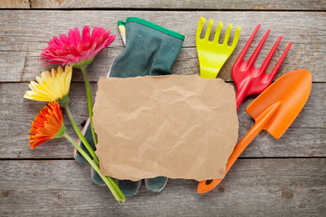 Gardening tools and colorful flowers