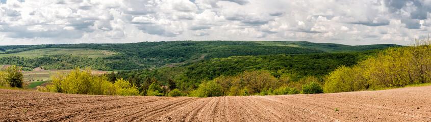 панорамный пейзаж