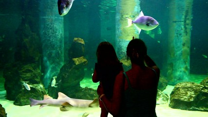 Little girl and his mother look through glass at aquairum