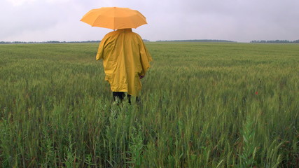 Farmer waiting for the rain in a wheat field