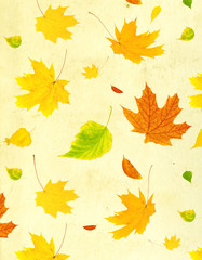 Grunge background with flying autumn leaves