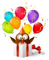 Birthday owl in gift box