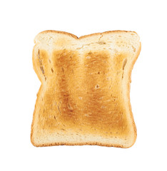 Toasted slice of bread isolated