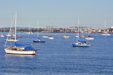 Boats mooring in Waitemata Harbour New Zealand