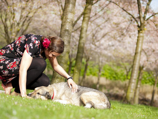 Beautiful girl petting her dog during a walk in the park