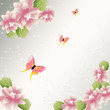 Flowers background with butterfly