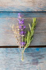 thyme, lavender and rosemary