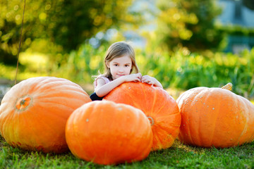 Adorable little girl embracing big pumpkin