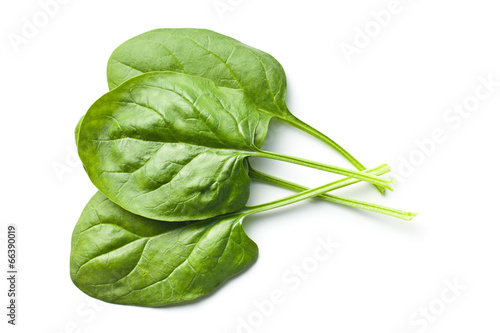 green spinach leaves - 66390019